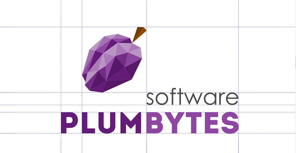 Логотип для компании-разработчика ПО - дизайнер Zhe_ka