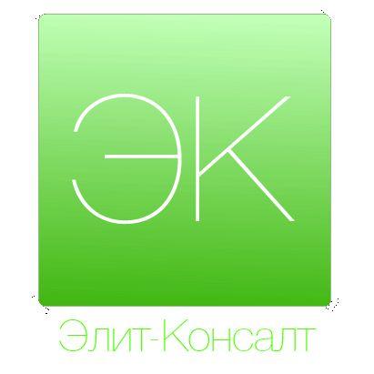 Логотип консалт-компании. Ждем еще предложения! - дизайнер zagretdinovt