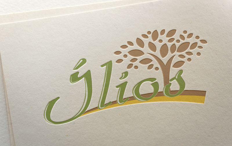 Разработка Логотипа и Фирменного стиля - дизайнер ready2flash