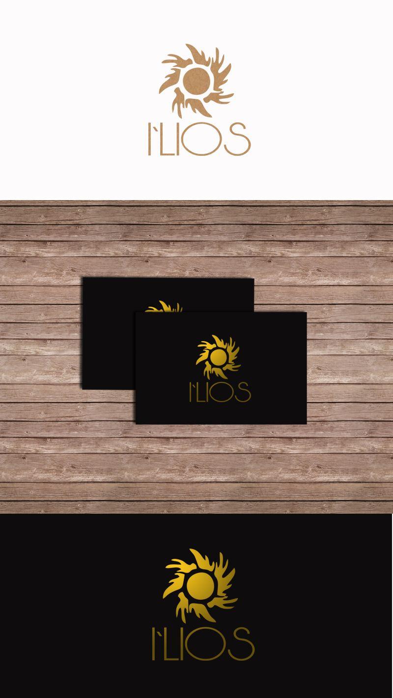 Разработка Логотипа и Фирменного стиля - дизайнер Ekalinovskaya