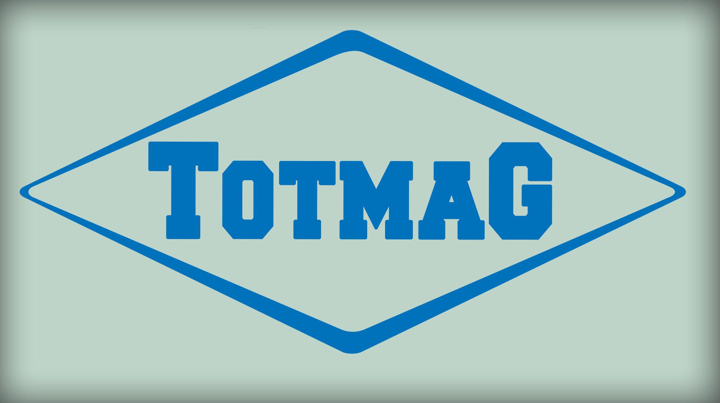Логотип для интернет магазина totmag.ru - дизайнер dreamveer