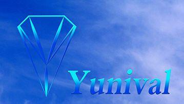 Логотип, фирменный стиль для Ай Ти компании - дизайнер cruck
