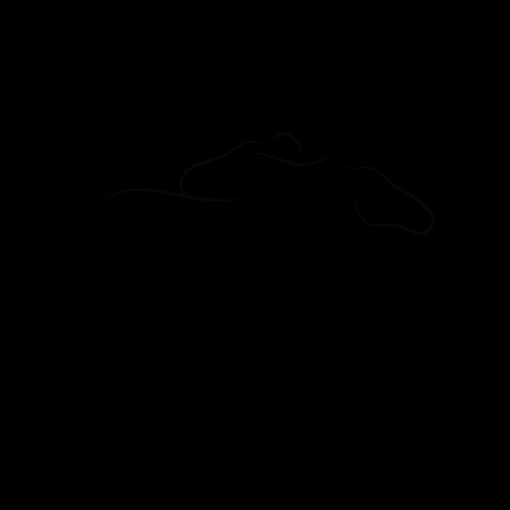 Образ лошади в логотипе (спортивная аналитика) - дизайнер bjarkoy