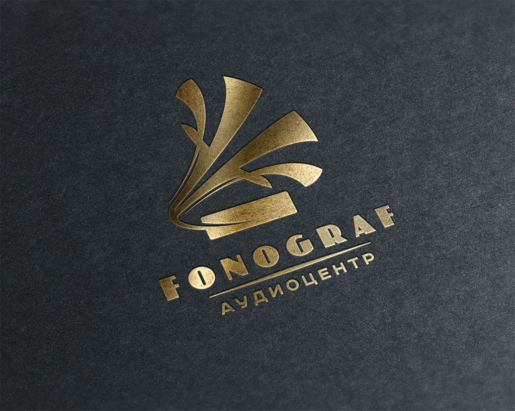 Лого и ФС для магазина аудиотехники - дизайнер stulgin