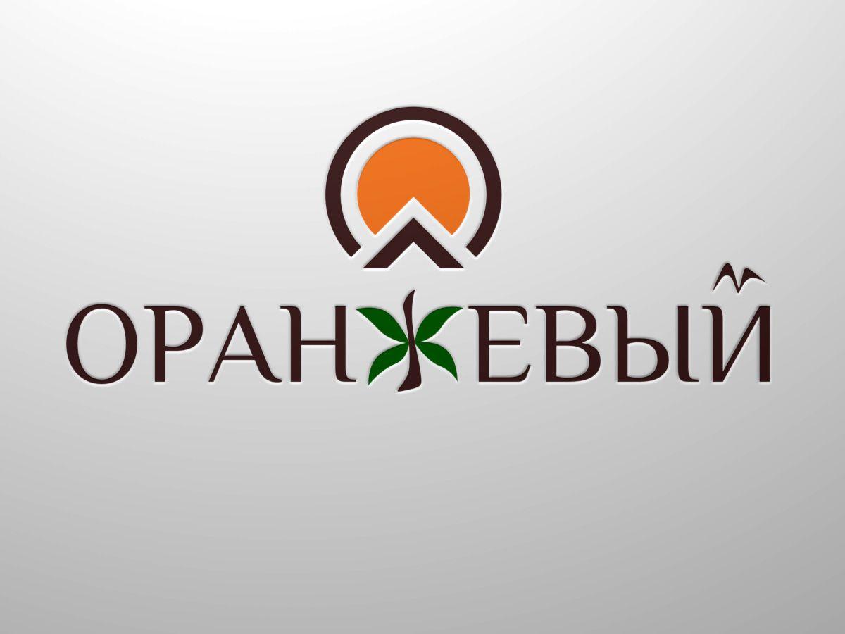 Логотип Финансовой Организации - дизайнер virtjob