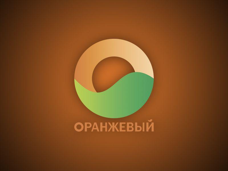 Логотип Финансовой Организации - дизайнер vision