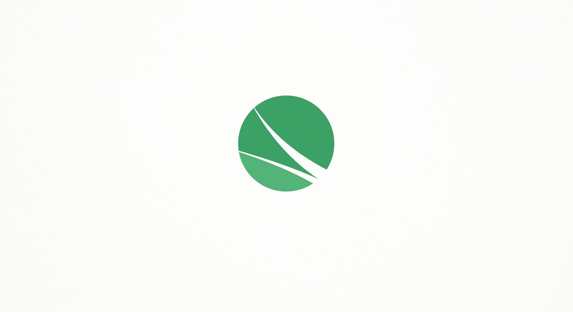 Логотип Финансовой Организации - дизайнер Ewgene