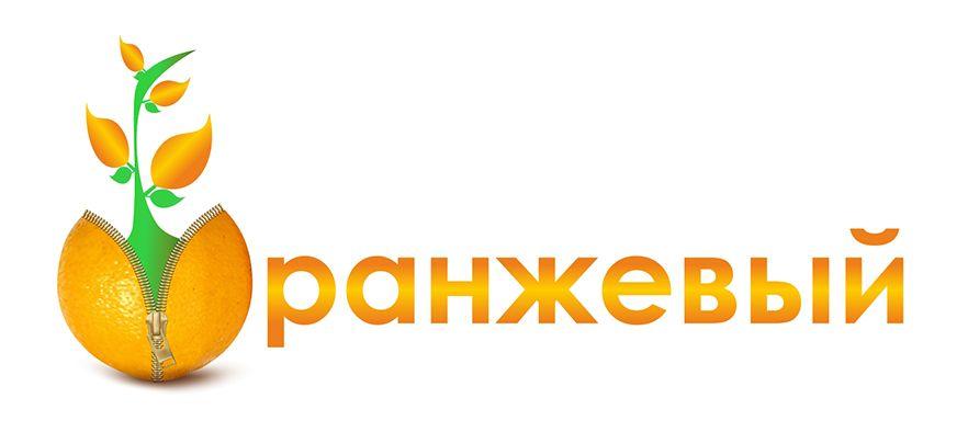 Логотип Финансовой Организации - дизайнер stopkinjohn