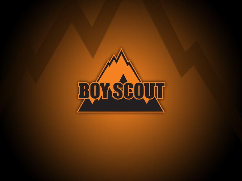 Логотип для сайта интернет-магазина BOY SCOUT - дизайнер vision