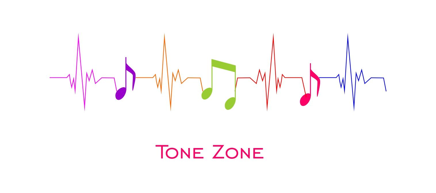 Лого и фирм. стиль инет-магазина муз. инструментов - дизайнер Krasivayav