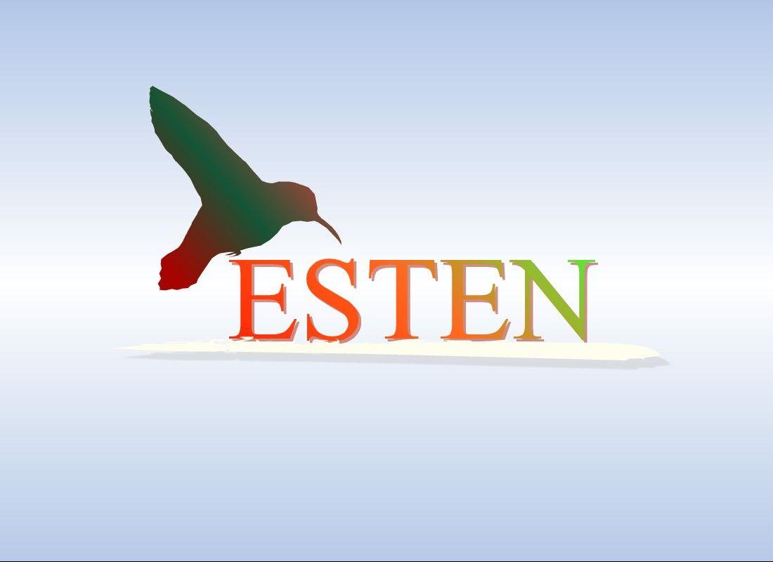 Создание логотипа - дизайнер Vraizen
