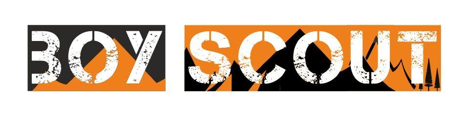 Логотип для сайта интернет-магазина BOY SCOUT - дизайнер stopkinjohn