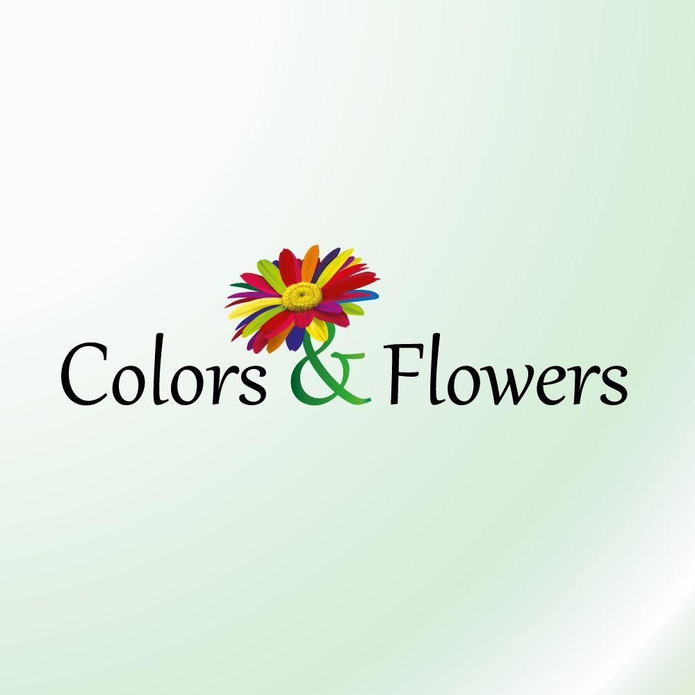Colors & Flowers Логотип и фирменный стиль - дизайнер monika
