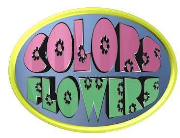 Colors & Flowers Логотип и фирменный стиль - дизайнер Richi656