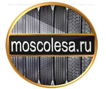 Лого и фир.стиль для ИМ шин и дисков. - дизайнер Richi656