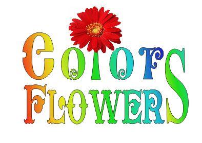 Colors & Flowers Логотип и фирменный стиль - дизайнер JackWosmerkin
