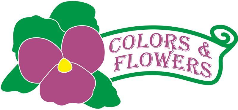 Colors & Flowers Логотип и фирменный стиль - дизайнер smokey
