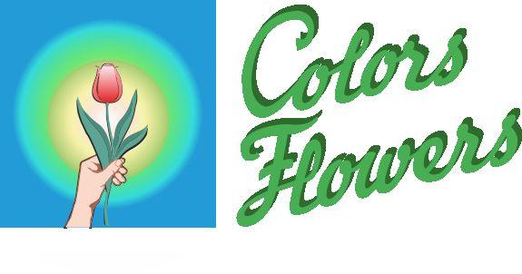 Colors & Flowers Логотип и фирменный стиль - дизайнер Restavr