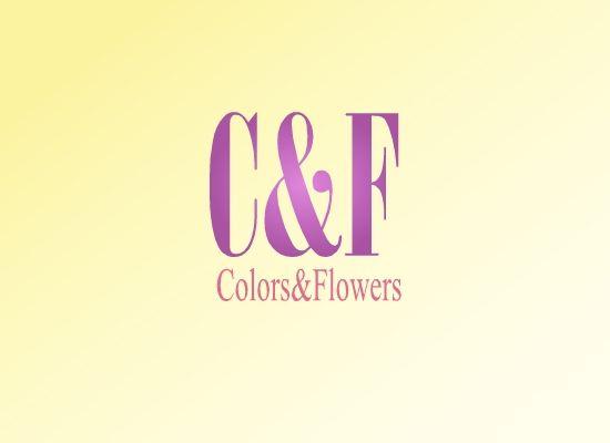 Colors & Flowers Логотип и фирменный стиль - дизайнер Colombina32