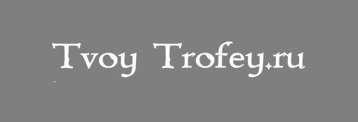 Создание логотипа для Твой Трофей - дизайнер clark7777