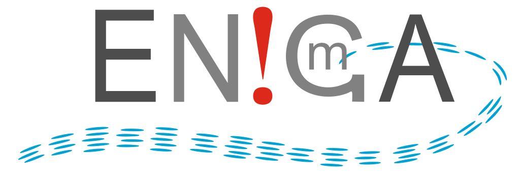 Логотип и фирмстиль для Enigma - дизайнер ice8gro78fiks