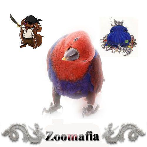 Логотип для интернет магазина зоотоваров - дизайнер jizay