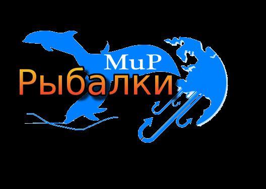 Логотип рыболовного магазина - дизайнер Vera174