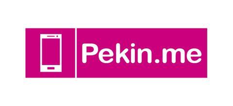 Логотип для компании pekin.me - дизайнер tyronwood