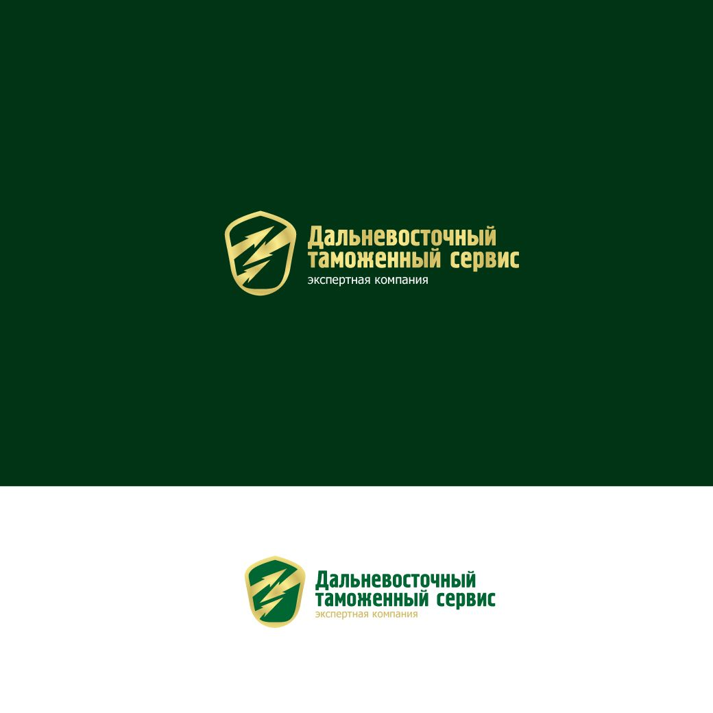 Логотип знак фирменные цвета для компании ДВТС   - дизайнер STAF