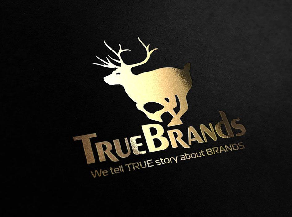 Фирменный стиль для интернет-магазина TrueBrands - дизайнер zhutol