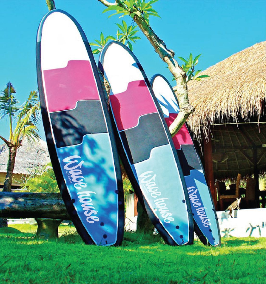Редизайн логотипа для серф-кэмпа на Бали - дизайнер a-lenka85