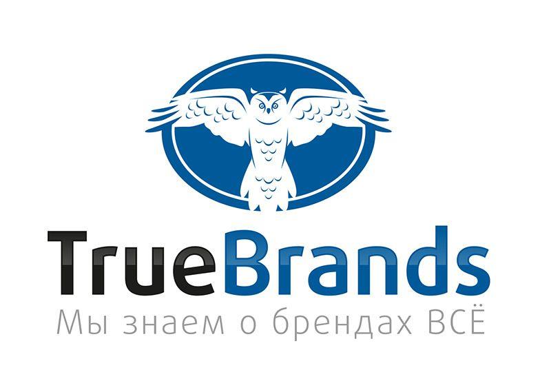 Фирменный стиль для интернет-магазина TrueBrands - дизайнер repmil