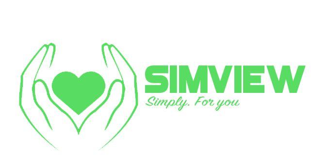 SimView лого и фирменный стиль - дизайнер Klopano12