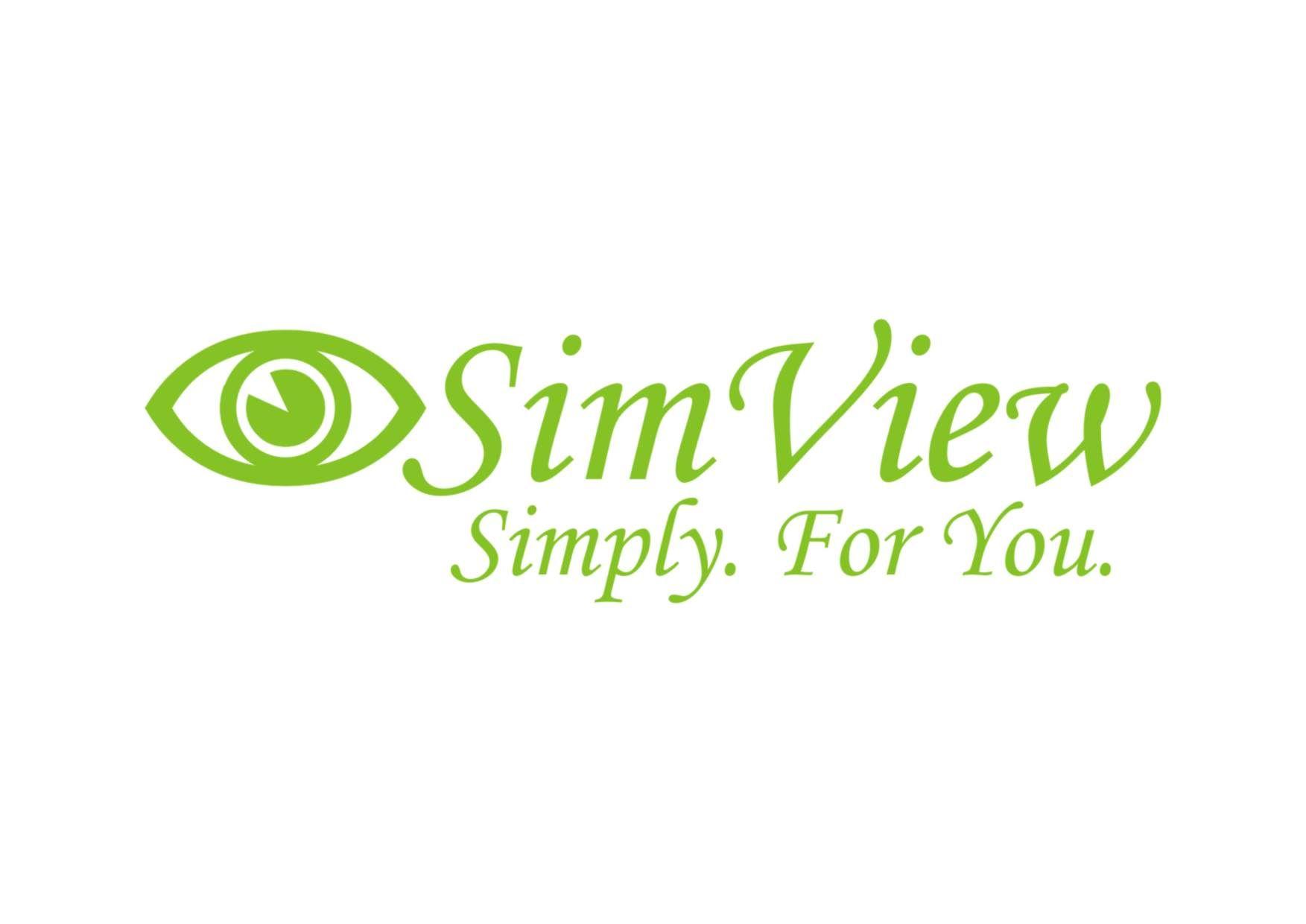 SimView лого и фирменный стиль - дизайнер xlop007