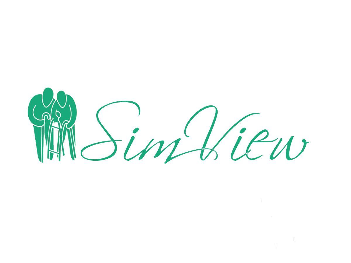SimView лого и фирменный стиль - дизайнер TerWeb