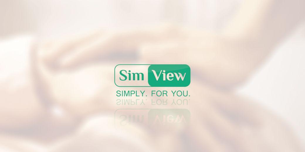 SimView лого и фирменный стиль - дизайнер trika