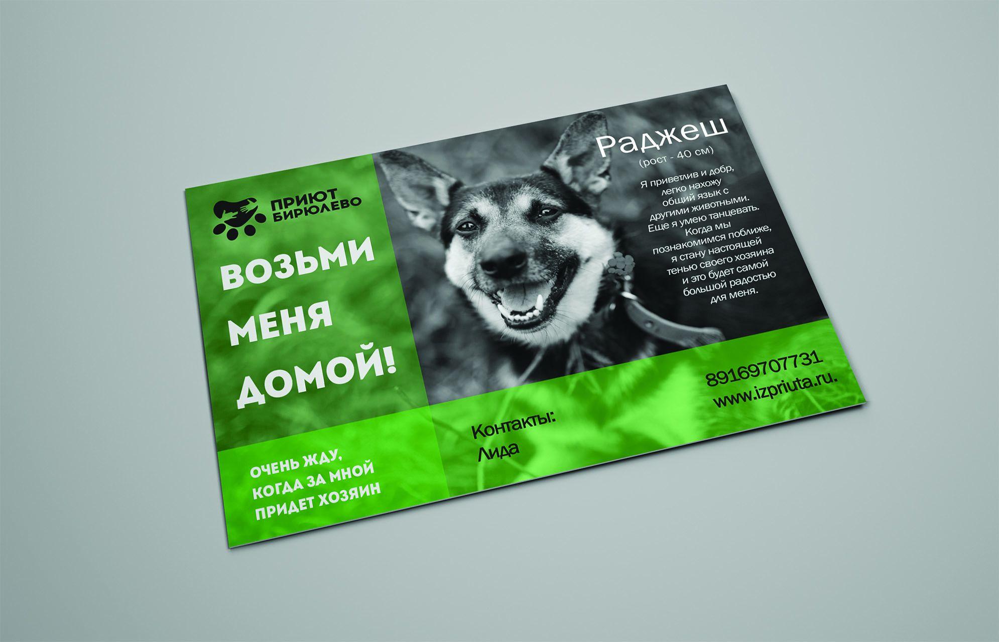 Дизайн листовки макет листовки