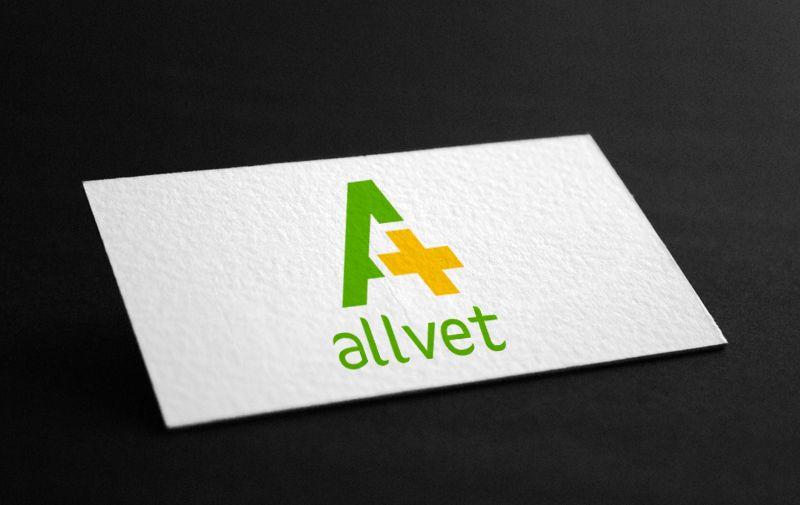 Создание логотипа и стиля ветеринарной компании - дизайнер DelStas