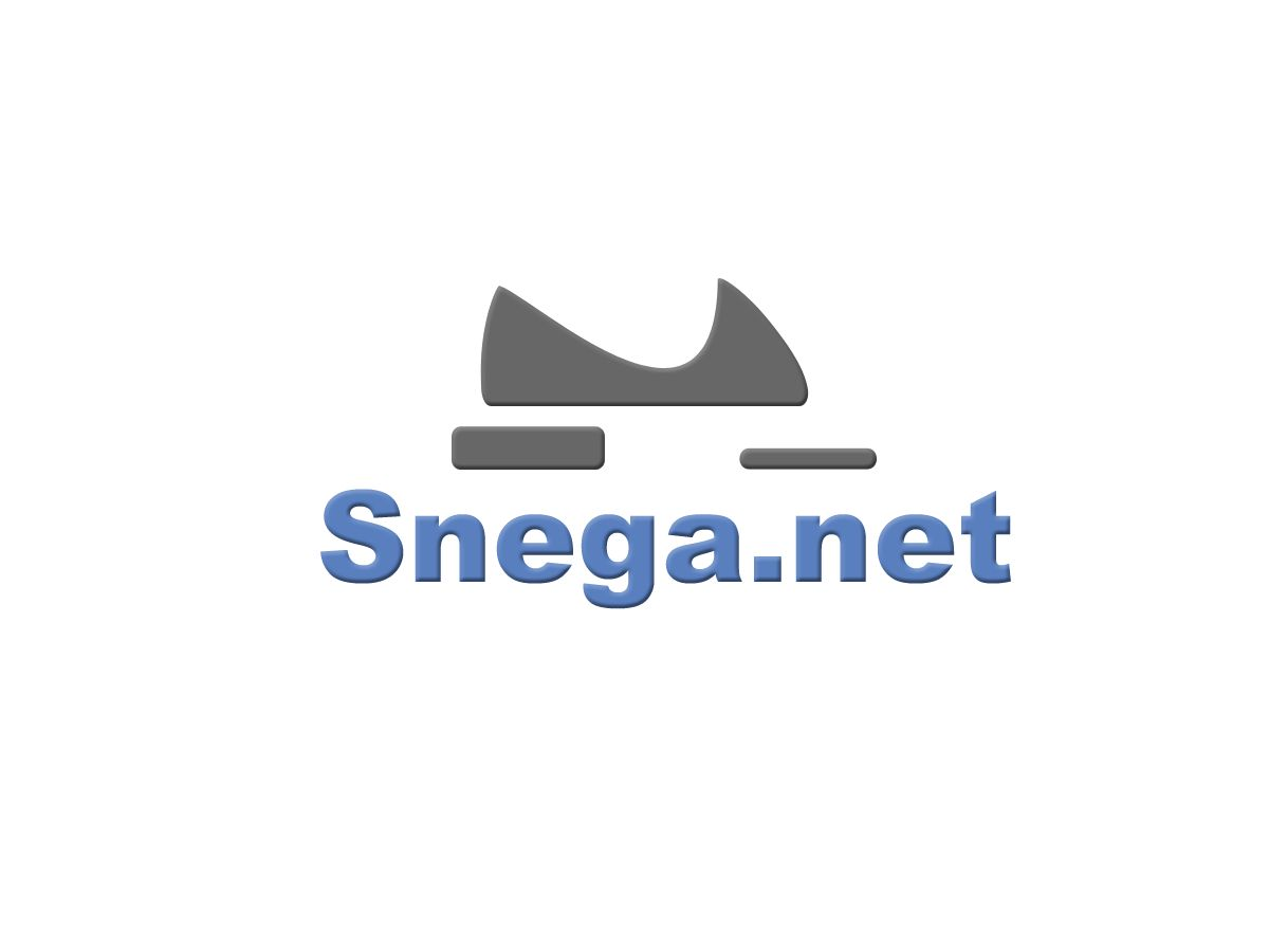 Разработка логотипа для сайта snega.net - дизайнер TerWeb