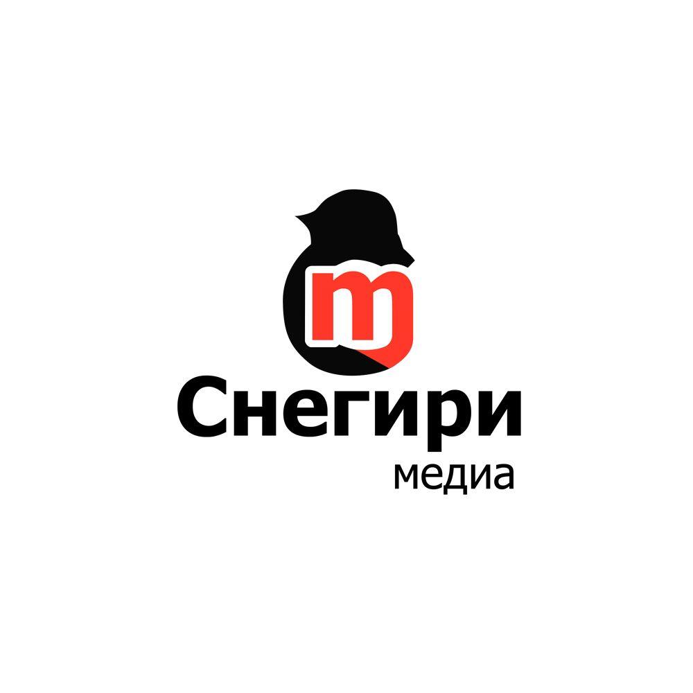 Разработка лого и стиля для рекламной компании - дизайнер weste32