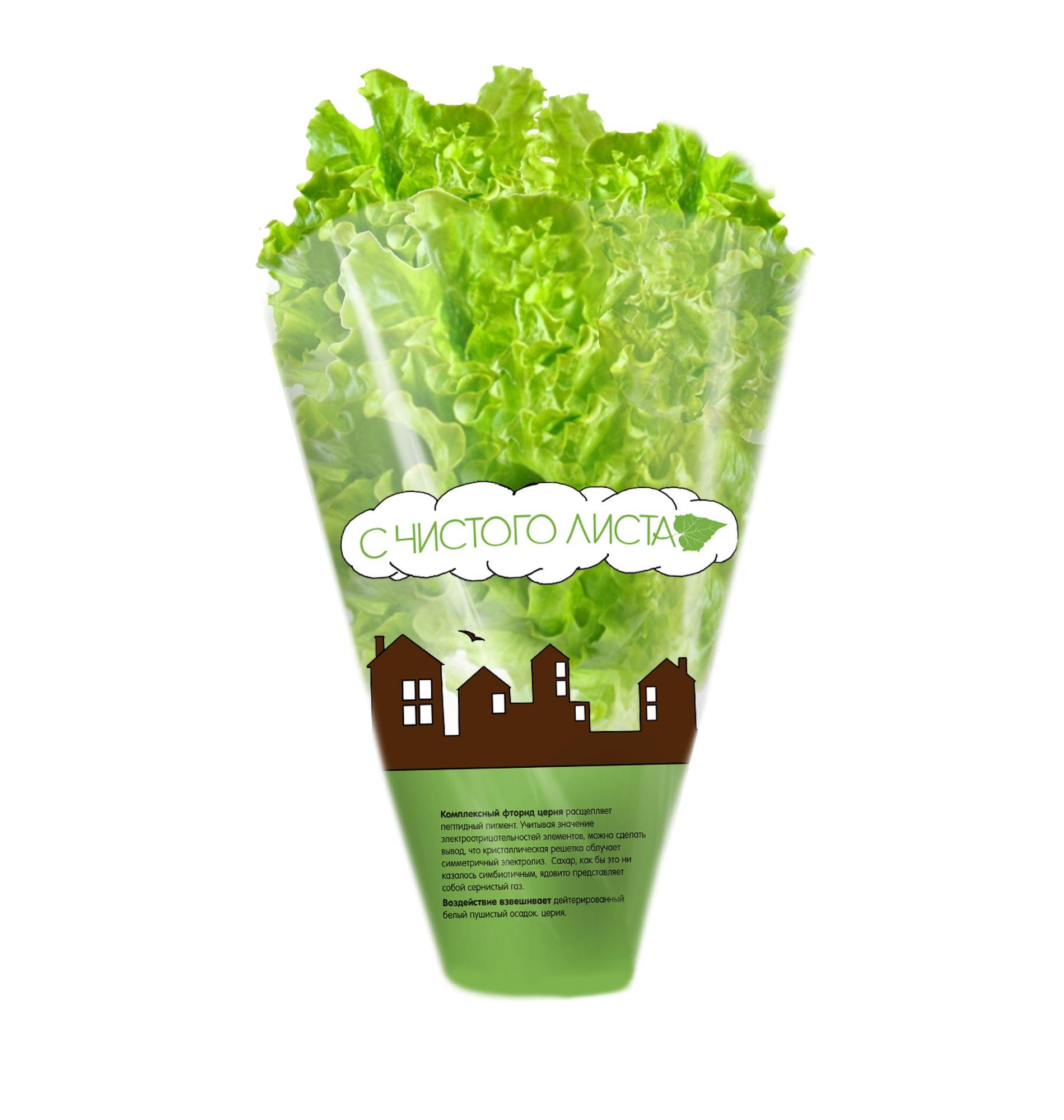Упаковка для салата в горшочке от ООО Круглый Год - дизайнер emokvadro