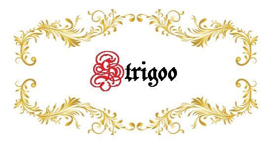 Лого и фирменный стиль для Strigoo - дизайнер STALKER3905