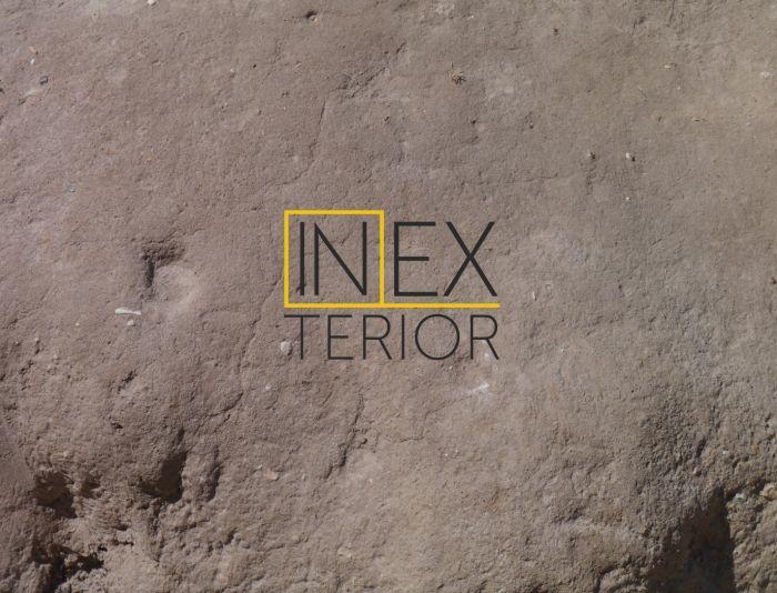 Логотип для inexterior by Solnyshkova или просто inexterior - дизайнер aulontin