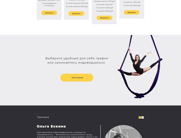 Веб-сайт для dancecircus.ru - дизайнер Izotov