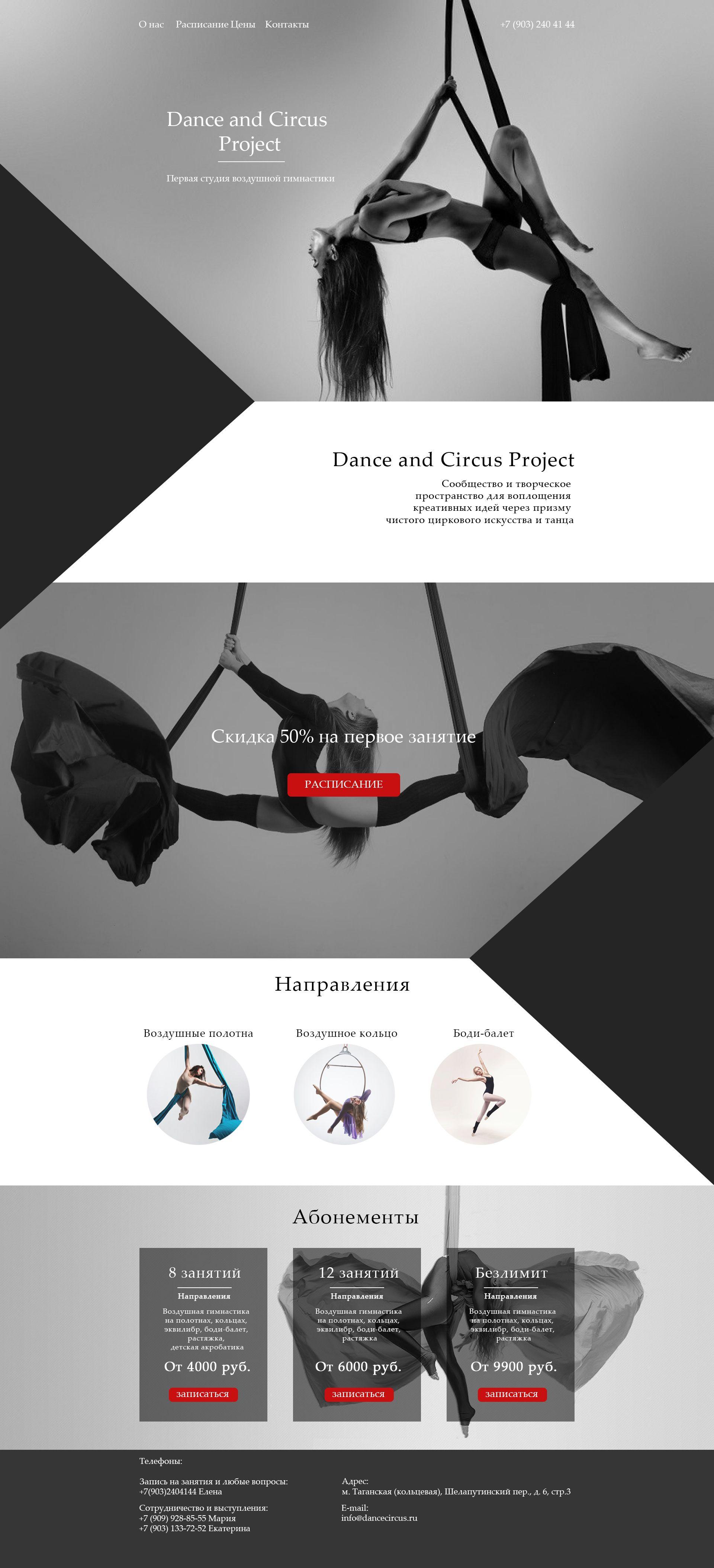 Веб-сайт для dancecircus.ru - дизайнер NastyaNay