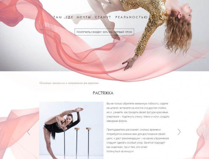 Веб-сайт для dancecircus.ru - дизайнер budmaria0940
