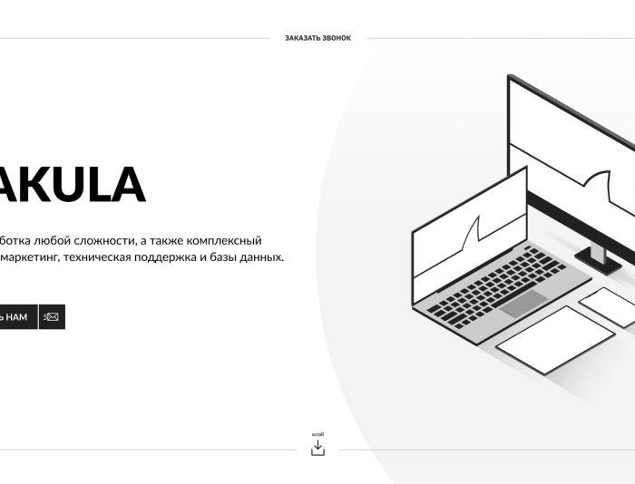 Веб-сайт для ITakula.ru - дизайнер novostudios