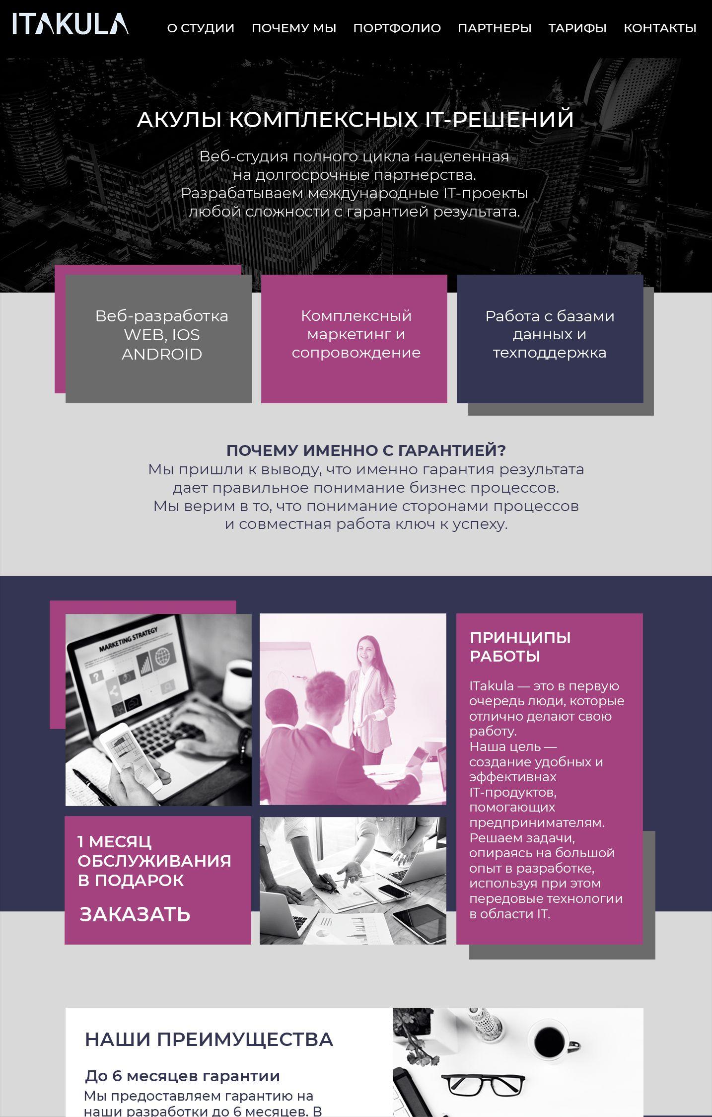 Веб-сайт для ITakula.ru - дизайнер Musina-M