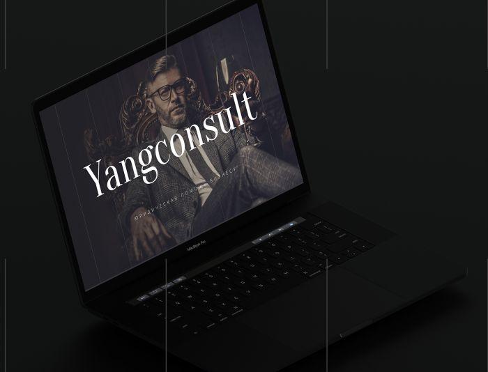 Веб-сайт для Yangconsult.com - дизайнер kompanets